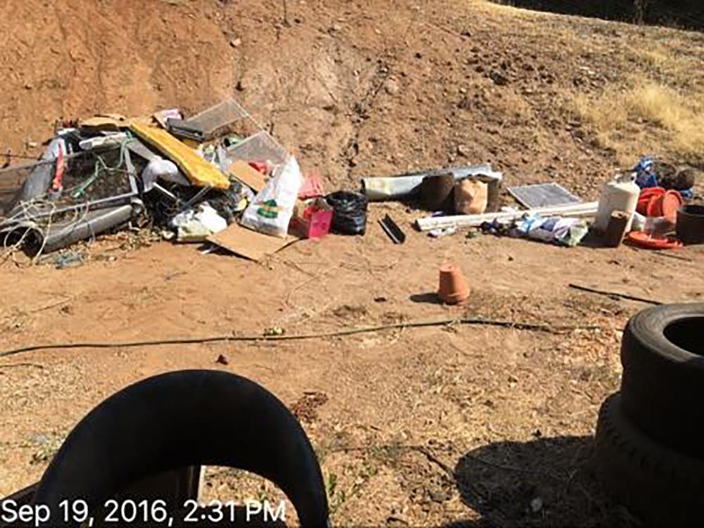 Debris and Junk Removal